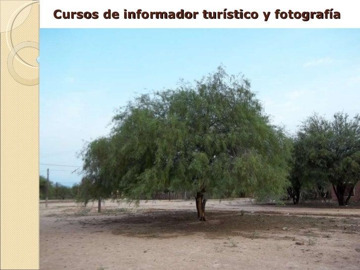 Cursos de informador turístico y fotografía