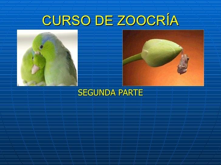 Curso  zoocria parte3