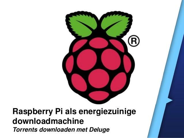 Raspberry Pi als energiezuinige downloadmachine Torrents downloaden met Deluge