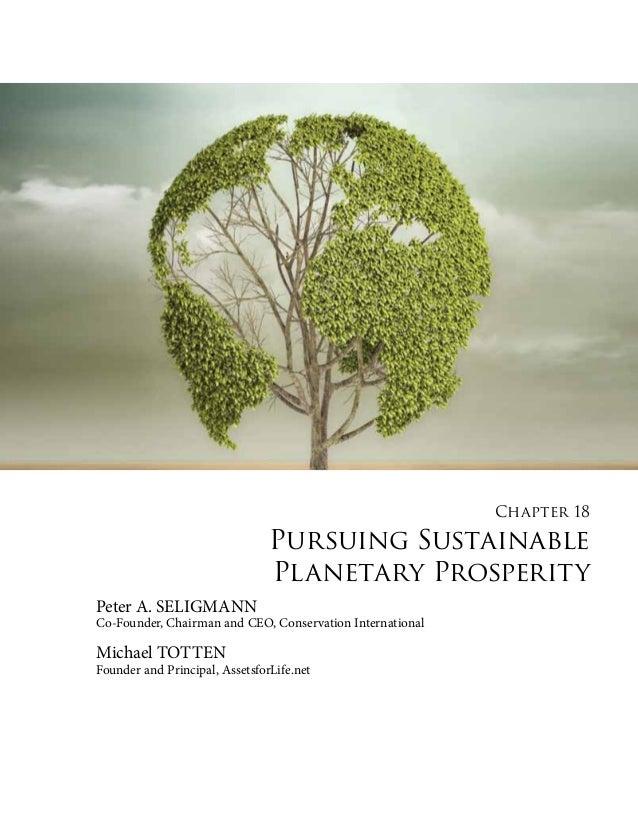 pursuing sustainable planetary prosperity chapter 18 US-China 2022