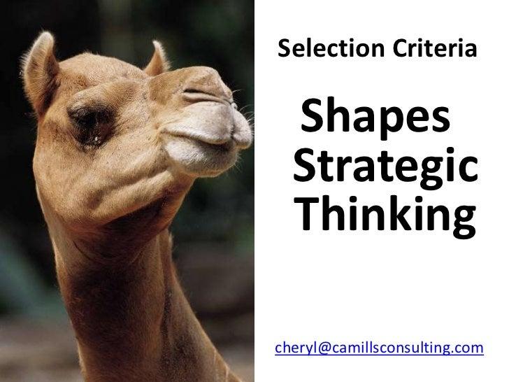 Selection Criteria    Shapes   Strategic   Thinking  cheryl@camillsconsulting.com
