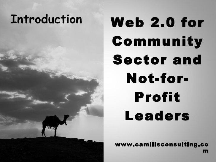 Web 2.0 for Community Sector and Not-for-Profit Leaders www.camillsconsulting.com Introduction