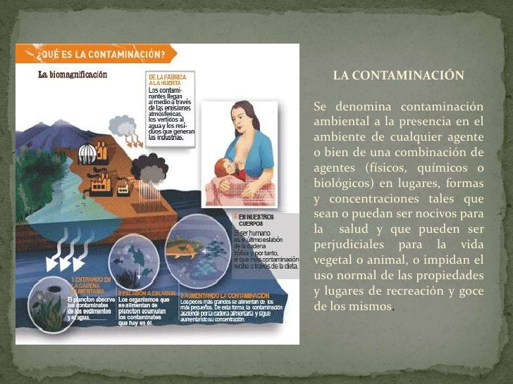LA CONTAMINACIÓN<br />Se denomina contaminación ambientala la presencia en el  ambientede cualquier agente o bien de una c...