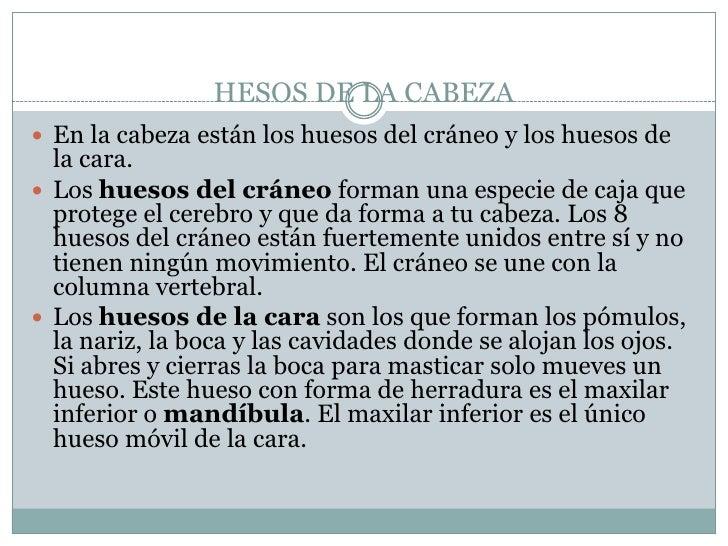 HESOS DE LA CABEZA<br />Enlacabezaestánlos huesos del cráneo y los huesos de la cara.<br />Loshuesosdelcráneo forma...
