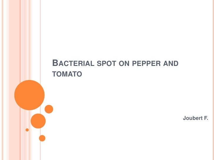 Bacterial spot on pepper and tomato<br />Joubert F.<br />