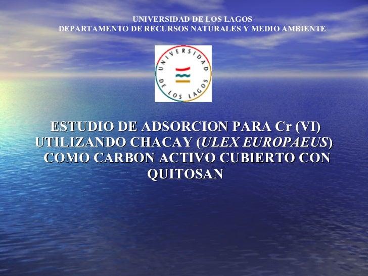 ESTUDIO DE ADSORCION PARA Cr (VI) UTILIZANDO CHACAY (ULEX EUROPAEUS)   COMO CARBON ACTIVO CUBIERTO CON QUITOSAN