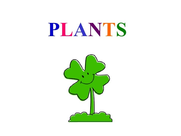 C:\Users\Sara\Documents\3º AñO Magisterio\Project!!!\Plants