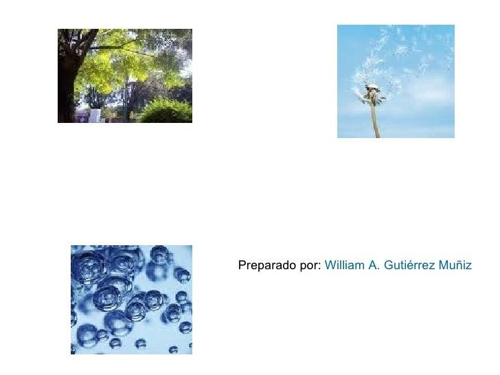 Preparado por:  William A. Gutiérrez Muñiz