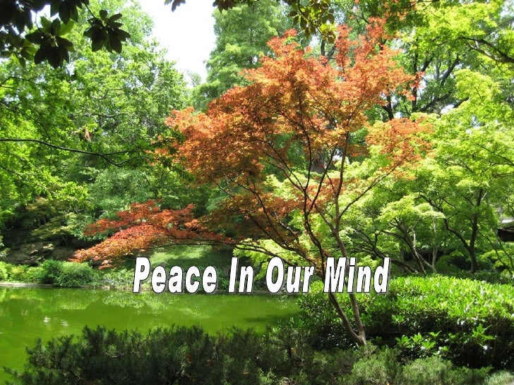 Peace In Our Mind