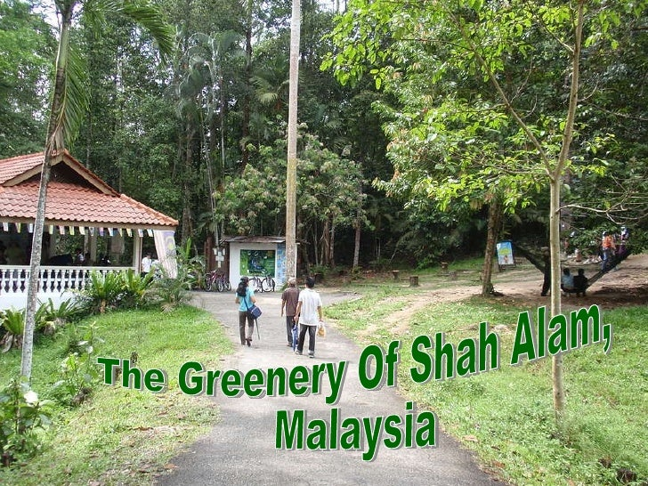 The Greenery Of Shah Alam, Malaysia