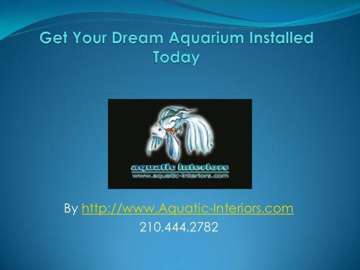 Get Your Very Own Custom Aquariums San Antonio Today