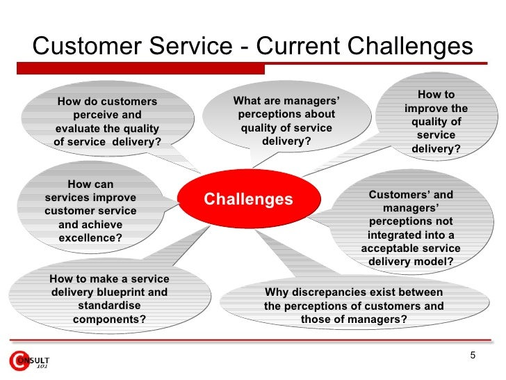 Essay On Customer Service Experience