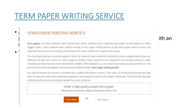 Professional term paper writer service
