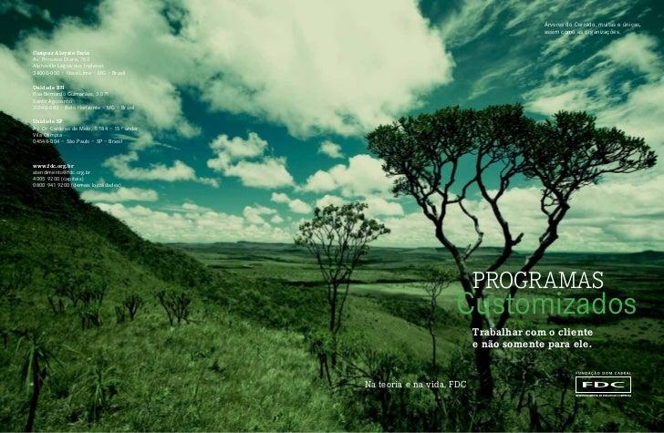 Árvores do Cerrado, muitas e únicas,                                                                                     a...