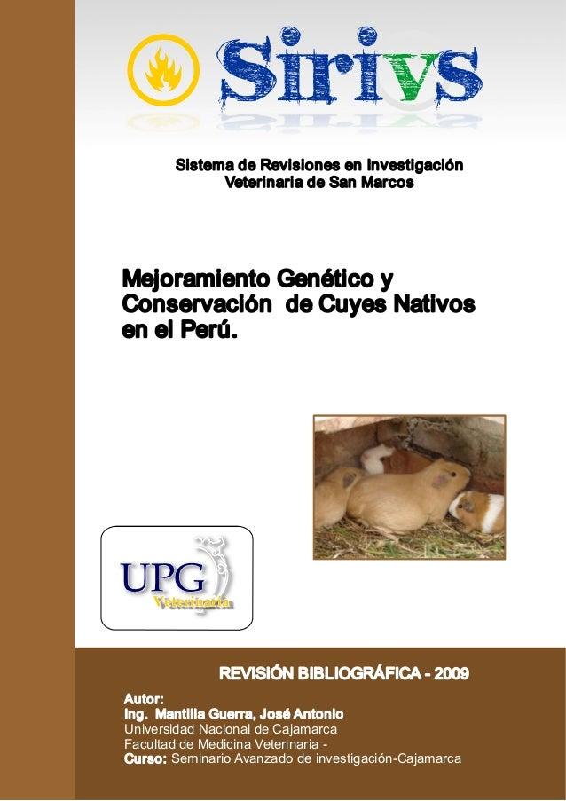 Sistema de Revisiones en Investigación  Veterinaria de San Marcos  Mejoramiento Genético y  Conservación de Cuyes Nativos ...