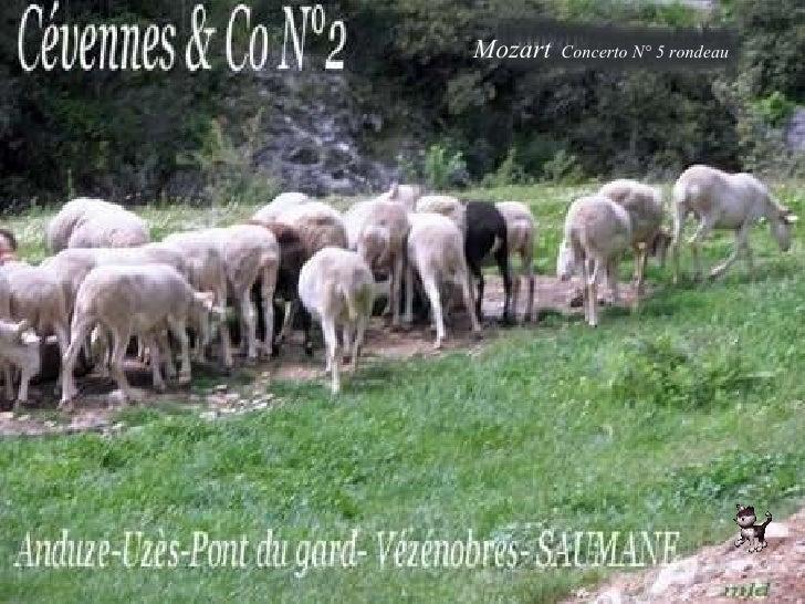 Mozart   Concerto N° 5 rondeau