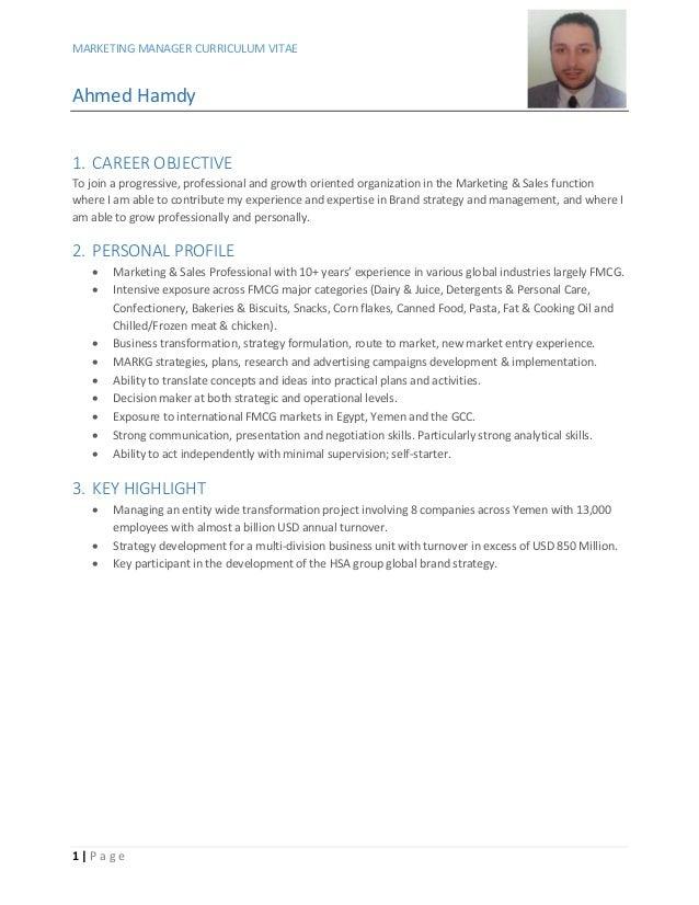 curriculum vitae marketing manager