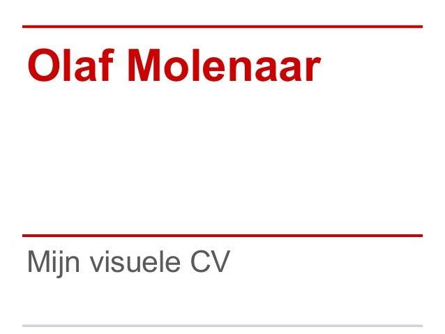 Olaf MolenaarMijn visuele CV