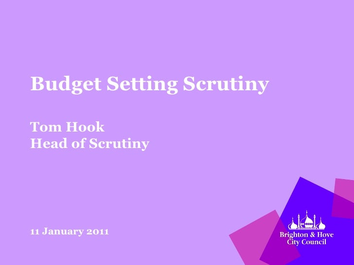 Budget Setting Scrutiny Tom Hook Head of Scrutiny 11 January 2011