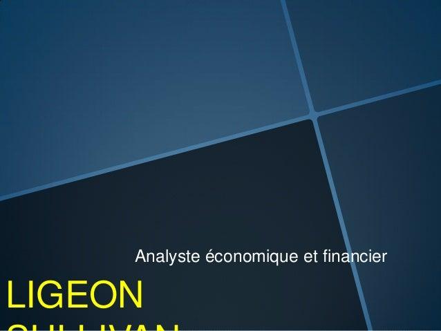 LIGEON Analyste économique et financier