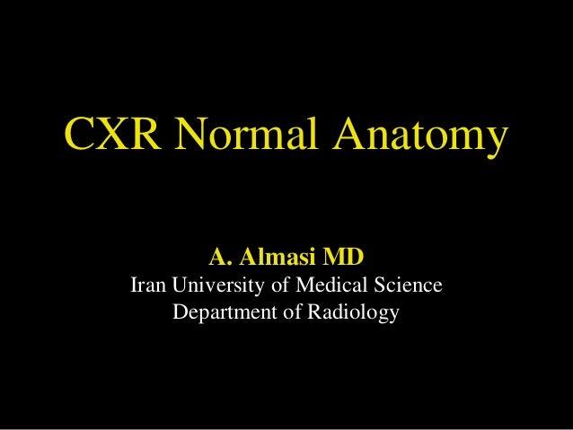 Cxr revised 24 11-91