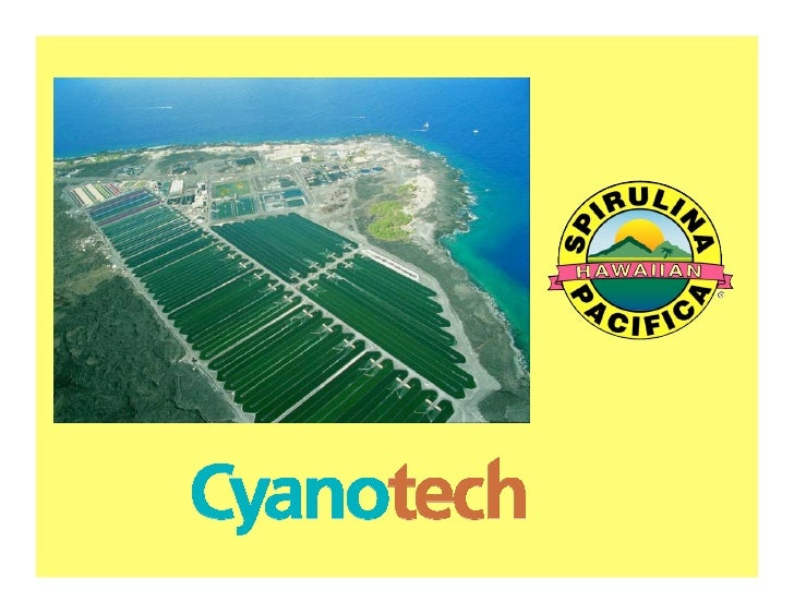 Cyanotech Spirulina
