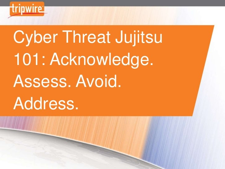 Cyber Threat Jujitsu 101: Acknowledge. Assess. Avoid. Address.