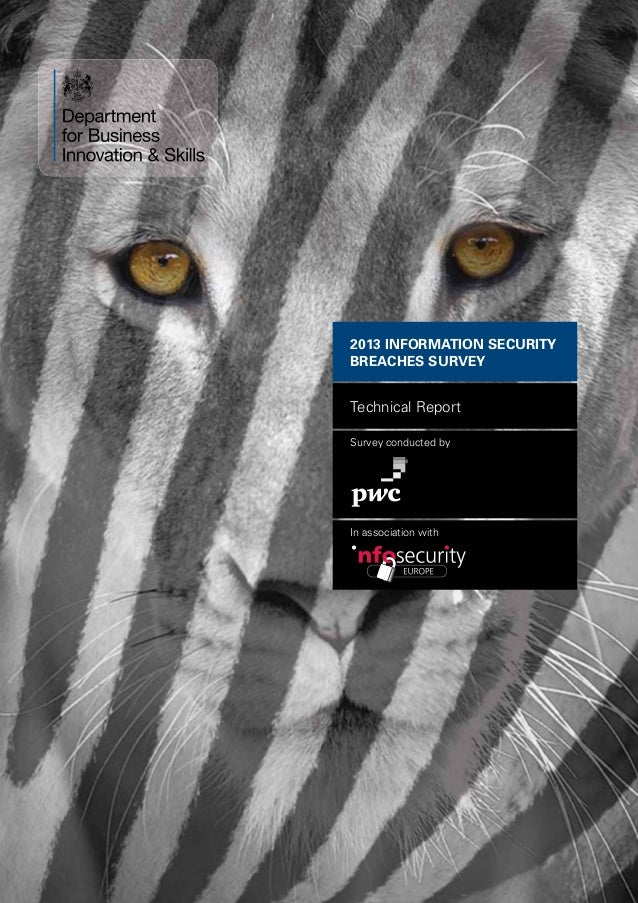 Cyber security  2013 - Technical Report