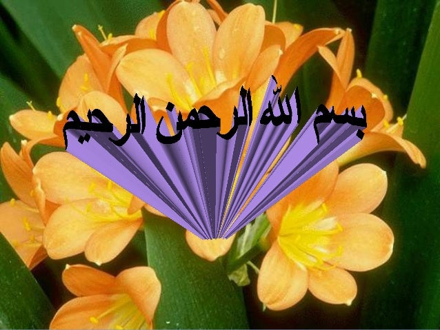 Cysts of The JawsCysts of The Jaws Dr. Adel I. AbdelhadyDr. Adel I. Abdelhady BDS, MSc ( Tanta, Eg.), PhD (Egypt,USABDS, M...