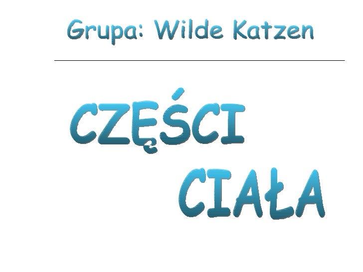CZĘŚCI CIAŁA Grupa: Wilde Katzen