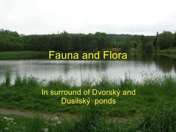 Fauna and Flora In surround of Dvorský and Dusilský  ponds