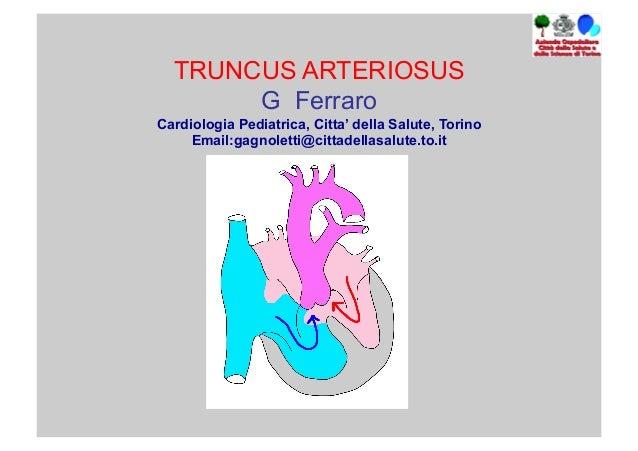 TRUNCUS ARTERIOSUS G Ferraro Cardiologia Pediatrica, Citta' della Salute, Torino Email:gagnoletti@cittadellasalute.to.it