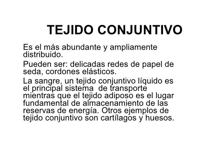 TEJIDO CONJUNTIVO   Es el más abundante y ampliamente distribuido.  Pueden ser: delicadas redes de papel de seda, cordones...