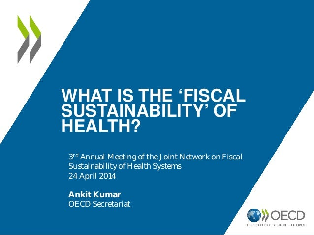 WHAT IS THE 'FISCAL SUSTAINABILITY' OF HEALTH? 3rd Annual Meeting of the Joint Network on Fiscal Sustainability of Health ...