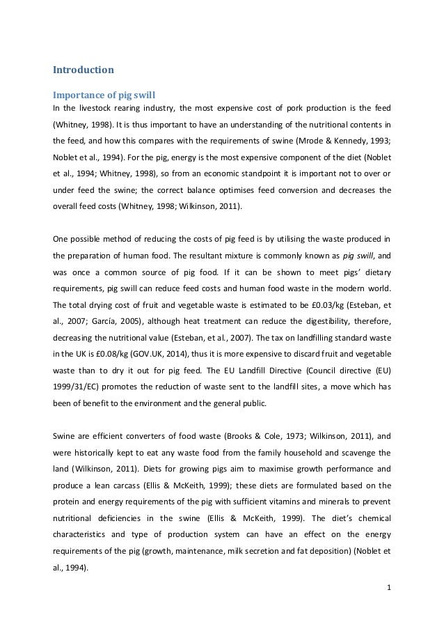 Dissertation pdf
