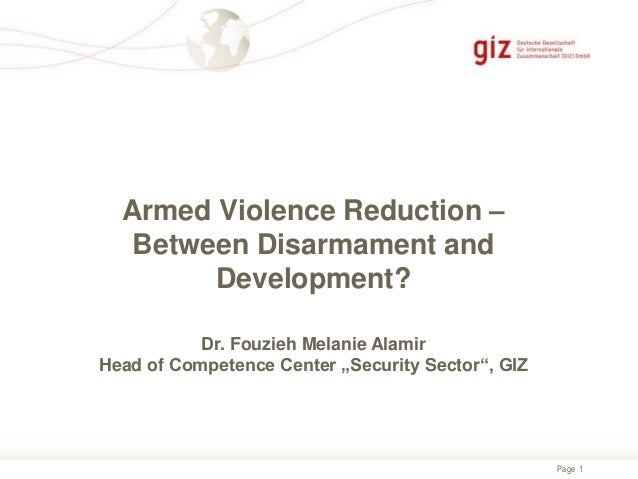 Fouzieh Melanie Alamir, Department for Security, Peace and Reconstruction (GIZ), Germany
