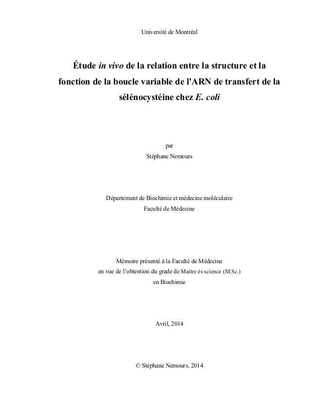 Université de Montréal Étude in vivo de la relation entre la structure et la fonction de la boucle variable de l'ARN de tr...