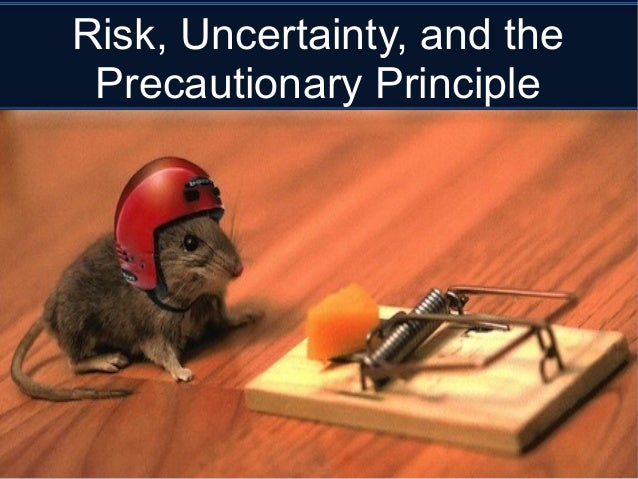 Is the Precautionary Principle an appropriate decision-making tool for climate policy?