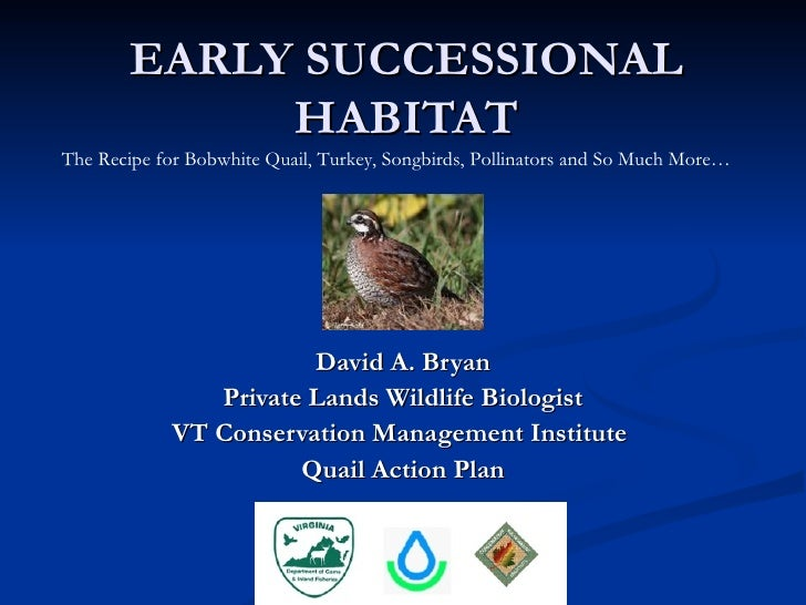 EARLY SUCCESSIONAL             HABITATThe Recipe for Bobwhite Quail, Turkey, Songbirds, Pollinators and So Much More…     ...