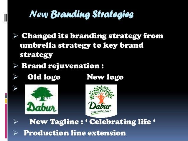 dabur brand extension Head rs 700 cr porfolio across heritage brands, dabur honey, hajmola,  well  as creating a healthy pipeline of line/brand extensions in adjacent categories.