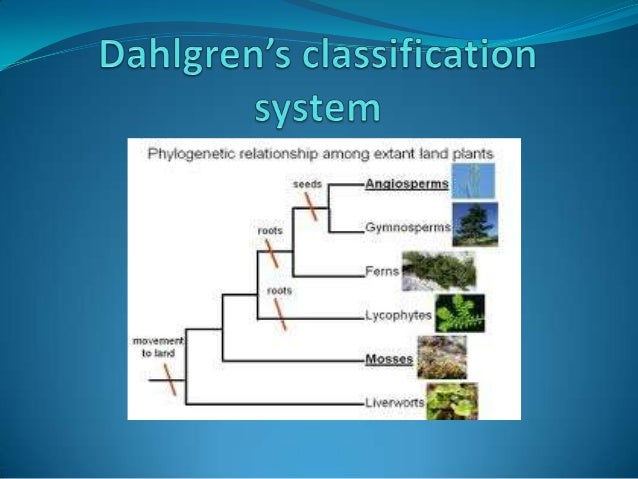  Rolf M.T. Dahlgren 1932-1987 Professor of botany inUniversity of Copenhagen. Published his original versionof his sys...