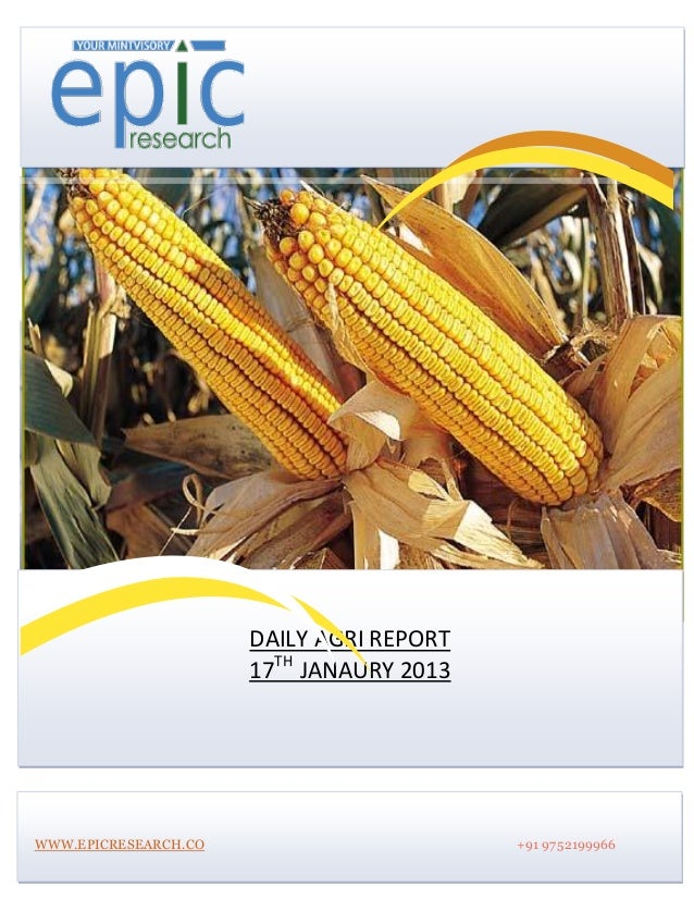 DAILY AGRI REPORT                      17TH JANAURY 2013WWW.EPICRESEARCH.CO                       +91 9752199966
