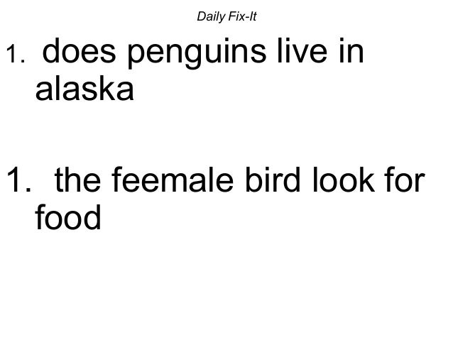 Daily Fix-It 1. does penguins live in alaska 1. the feemale bird look for food