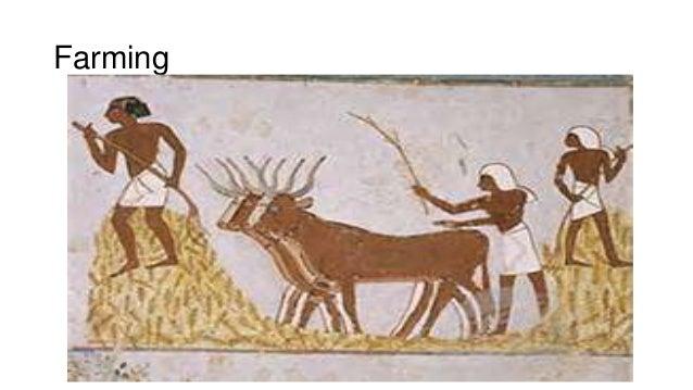 egyptian daily life Amazoncom: daily life of the egyptian gods (9780801482489): dimitri meeks, christine favard-meeks, g m goshgarian: books.