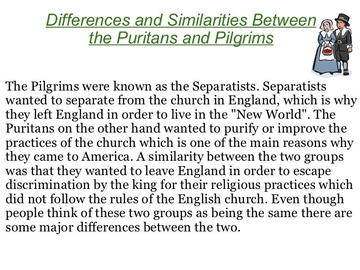 pilgrims and puritans essay