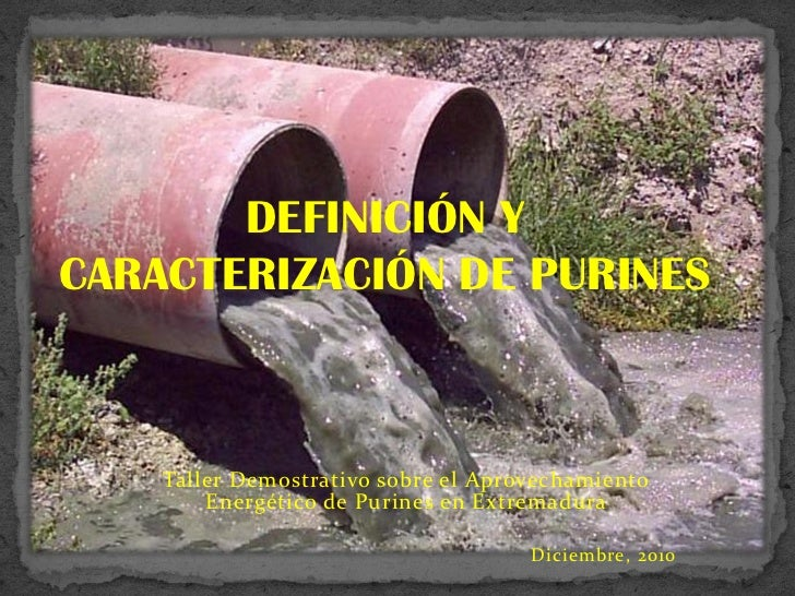 DEFINICIÓN YCARACTERIZACIÓN DE PURINES    Taller Demostrativo sobre el Aprovechamiento        Energético de Purines en Ext...