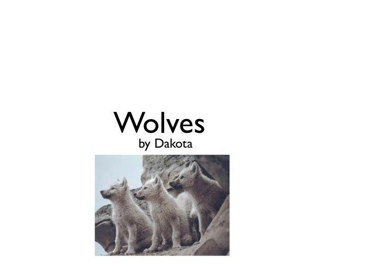Wolves by Dakota