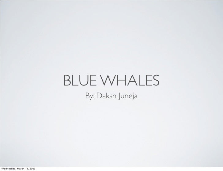 BLUE WHALES                               By: Daksh Juneja     Wednesday, March 18, 2009