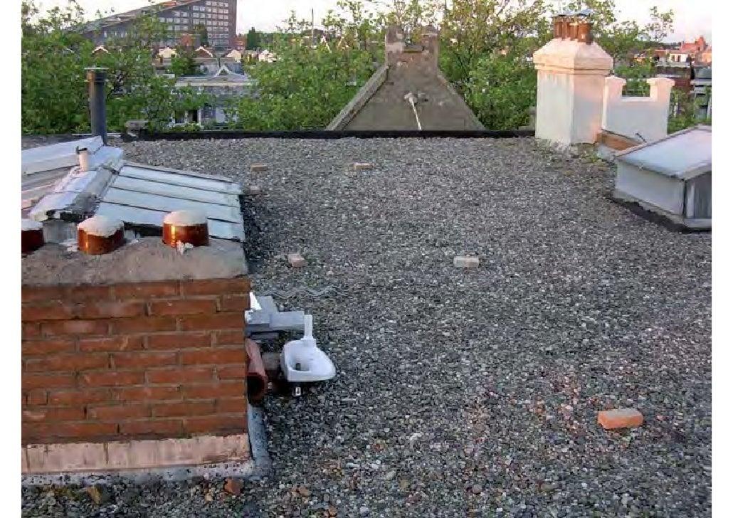 rooftop garden _ green roof