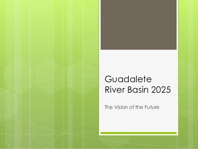 Guadalete River Basin 2025 The Vision of the Future